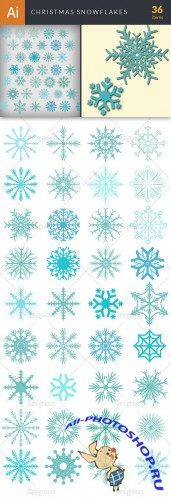 Vector Christmas Snowflakes Set - Winter Elements