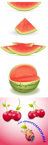 Watermelon and Cherry Vector Set