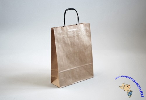 Realistic Paper Bag Mock-up Template PSD
