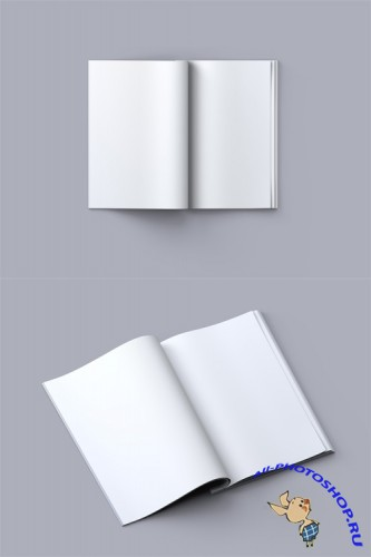 2 Book Mock-up Templates PSD