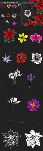 Winter Flowers Vector Illustrations Pack 110