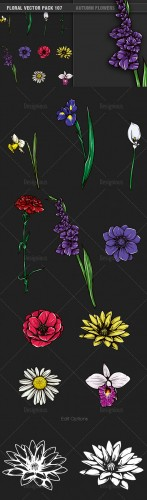 Autumn Flowers Vector Illustrations Pack 107