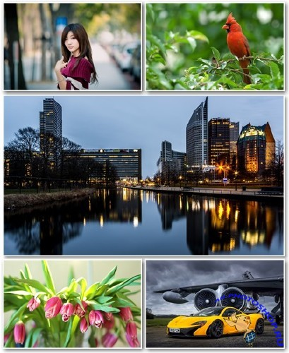 Best HD Wallpapers Pack №1247