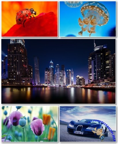 Best HD Wallpapers Pack №1256