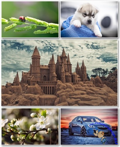 Best HD Wallpapers Pack №1287