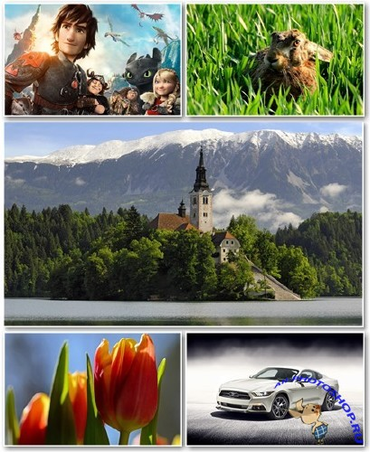 Best HD Wallpapers Pack №1291