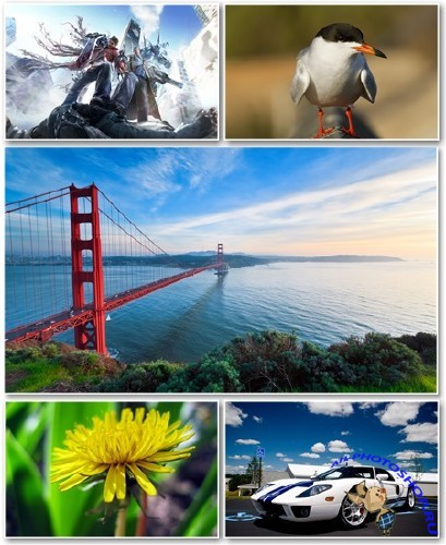 Best HD Wallpapers Pack №1299