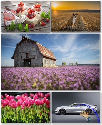 Best HD Wallpapers Pack №1304