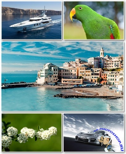 Best HD Wallpapers Pack �1306