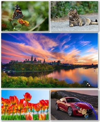 Best HD Wallpapers Pack �1309