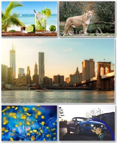 Best HD Wallpapers Pack №1317