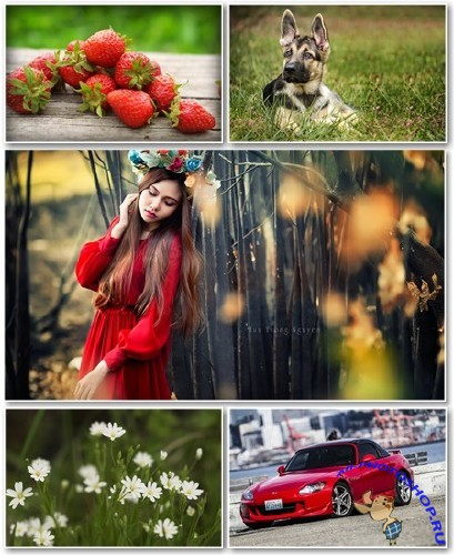 Best HD Wallpapers Pack �1323