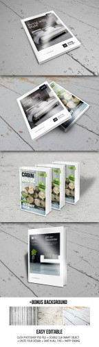 CreativeMarket - Book Mock Ups 33787