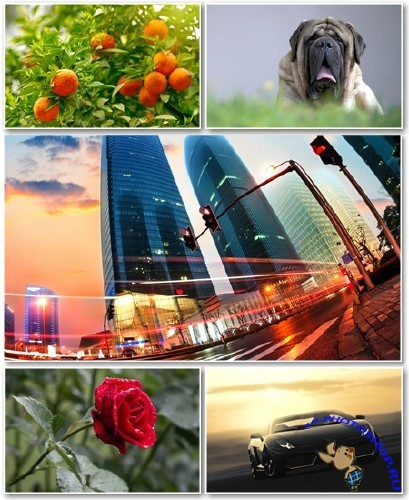 Best HD Wallpapers Pack �1353