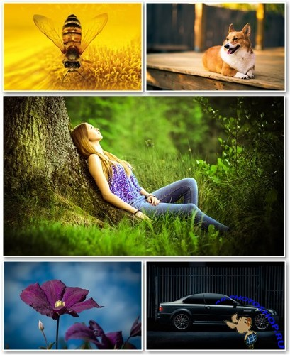 Best HD Wallpapers Pack №1354