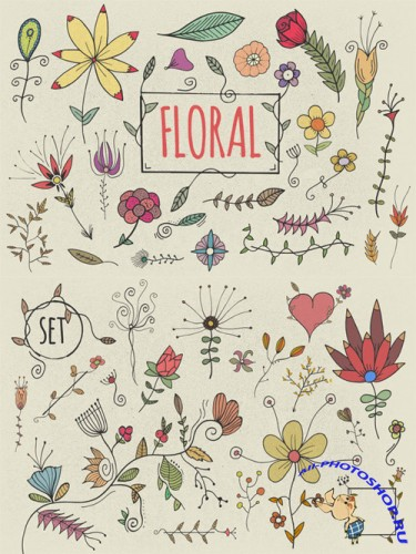 Vector Set Hand Drawn Florals
