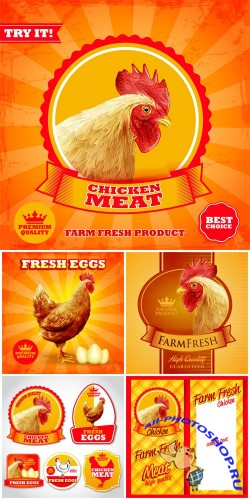 ���������� �������� � ���� � ������� / Vector labels and backgrounds with chicken