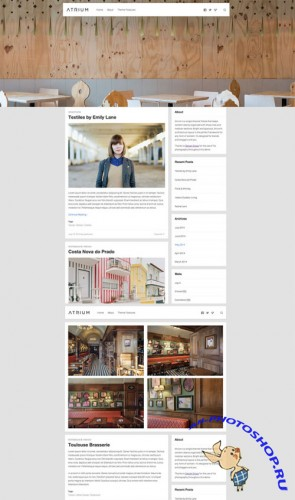 CreativeMarket - Atrium WordPress Theme