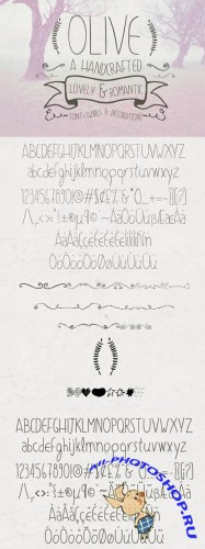Olive Hand Drawn Font plus Decorations