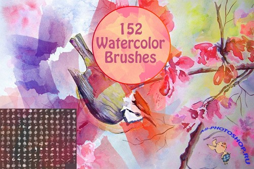 CreativeMarket - 152 Watercolor Brushes