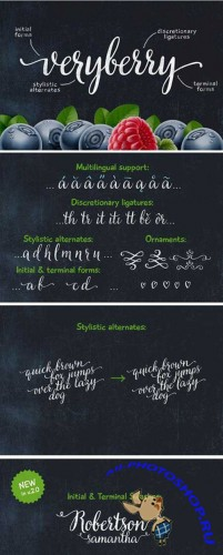 CreativeMarket - Veryberry Script Font Family