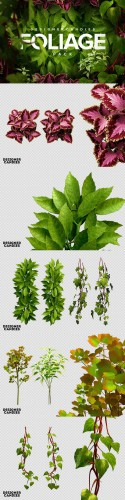 3D Foliage Pack - Transperent PNG