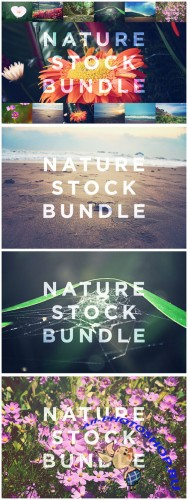 Nature Stock Bundle - Creativemarket 119511