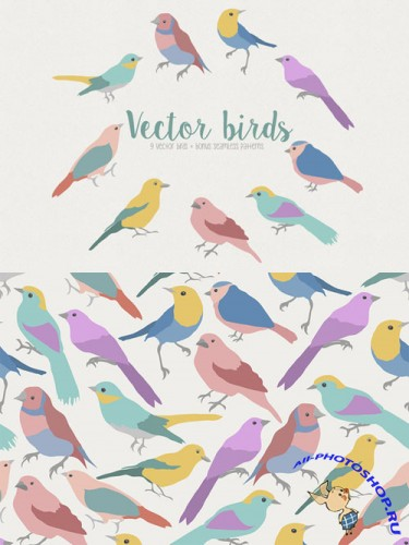 Creativemarket Vector bird 27234