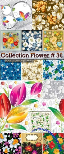 Collection Flower Backgrounds in Vector # 36