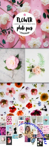 Creativemarket - Stocksy Floral Pack 280407