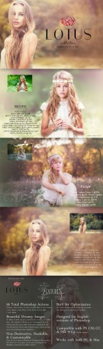 Creativemarket - Lotus Photoshop Action Collection 155849