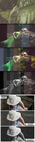 Creativemarket - Stems & Roots Action Collection 264242