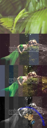 Stems & Roots LR/ACR Presets - Creativemarket 280476