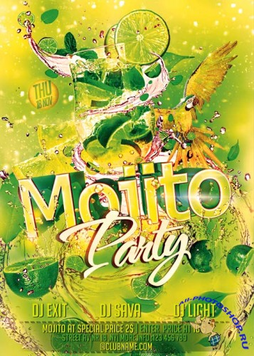 Mojito Party Flyer