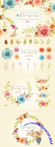 Creativemarket - Watercolor Flowers Pack 243885