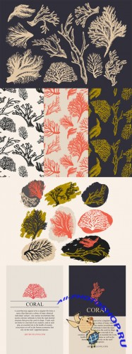 Coral & Seaweed Drawings & Patterns - Creativemarket 82508