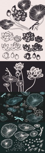 Lotus Flowers & Leaves Drawings - Creativemarket 131007