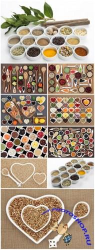 Sets of spices - Stock photo