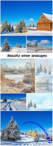 Beautiful winter landscapes, trees, snow