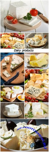 Dairy products, cheese
