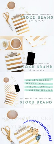Goldwyn Styled Stock Brand Flat Set - Creativemarket 388087