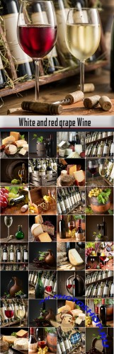 White and red grape Wine