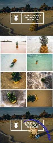 Pineapple's Day at the Beach - Creativemarket 474113