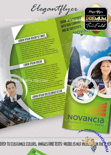 Business Premium Tri-Fold PSD V14 Brochure Template