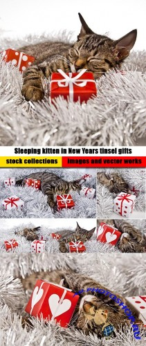 Sleeping kitten in New Years tinsel gifts