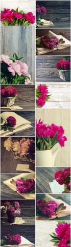 Beautiful peony flowers - Set of 16xUHQ JPEG Professional Stock Images