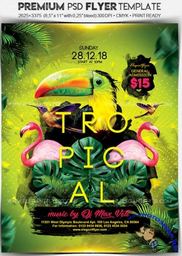 Tropical Party V14 Flyer PSD Template + Facebook Cover