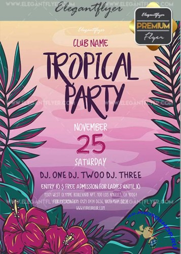 Tropial Party V20 Flyer PSD Template + Facebook Cover