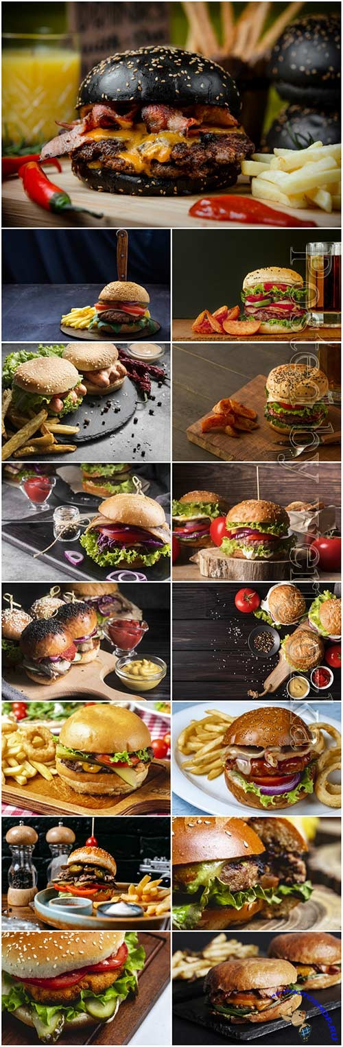Gamburger with fries, fast food stock photo set