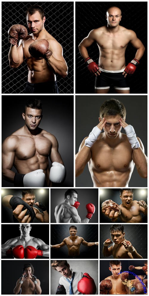 Strong male boxer stock photo